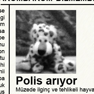 Rumli az újságban
