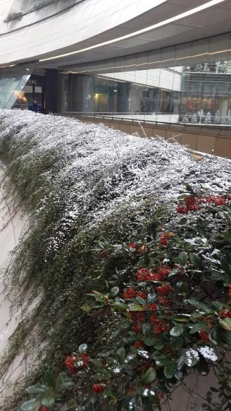 Esik a hó a Kanyon AVM-ben